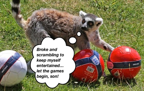 lemur-balls_1666839i